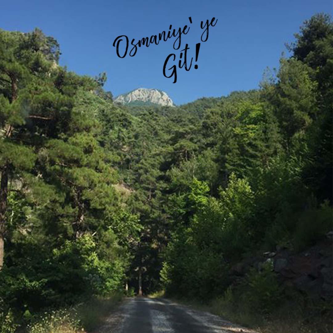Osmaniye Fenk Yaylası- Hacı Dağı